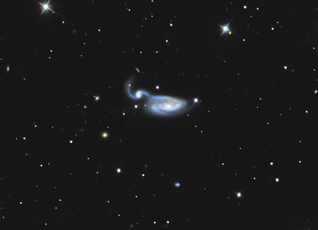ARP 84, NGC 5394 & NGC 5395,                                Big_Dipper
