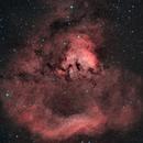 NGC 7822 bicolor,                                M. Levens