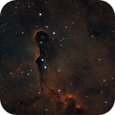 Elephant's Trunk nebula,                                jreese