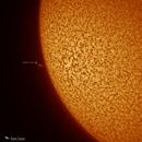 Solar Prominence - January 31,                                Damien Cannane