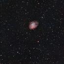 M1 Crab Nebula,                                Salvopa