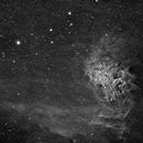 Flaming Star,                                David Hulse