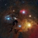Rho Ophiuchi....Lots More Data,                                Tom Peter AKA Astrovetteman