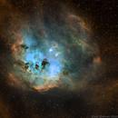 The Tadpoles Nebula,                                Chris