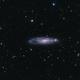 NGC 247 (Needle's Eye Galaxy),                                  Ben