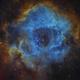 NGC 2244 in Rosette nebula Hubble colors,                                Jens Zippel