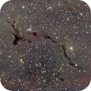 LDN 1082 - Seahorse dark nebula,                                Girish