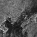 NGC 7000 in H-Alpha,                                Josh Lake