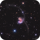 NGC4038-NGC4039 Antennae Galaxies in LRGB,                                Kayron Mercieca