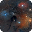 Rho Ophiuchi cloud complex,                                Michel Lakos M.