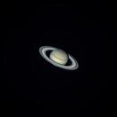 Saturn,                                Michael Erard