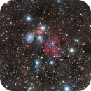 The Angel NGC 2170: Still Life with Reflecting Dust in Monoceros,                                Harel Boren