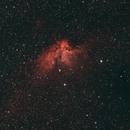 The Wizard Nebula,                                David Quattlebaum