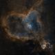 The Heart Nebula in SHO,                                Alex Roberts