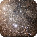 IC 1396,                                Olivo Gabriele