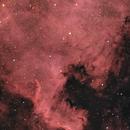 NGC7000 - North America Nebula,                                Miroslav Horvat