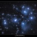 M45- The Pleiades,                                  William Maxwell