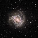 NGC 5236 (M83) - Southern Pinwheel Galaxy,                                Ken