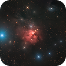 NGC 1579,                                Mike Miller