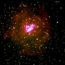 ngc1491 nebulosa a emissione in cassiopea        distanza 11.400 A.L.,                                Carlo Colombo