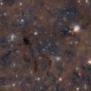 NGC 1333,                                Dennis Sprinkle