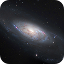 M106, A Spiral Galaxy with a Strange Center (4 panels),                                Ruben Barbosa