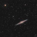 Galaxie Ngc891 C8 Edge f/7 Atik4000,                                Maxime Tessier