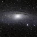Andromeda,                                Oriol Serret Fortin