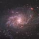 M33 The Triangulum Galaxy,                                chadleader