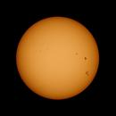 Sunspots Sept 7-17,                                Robert Eder