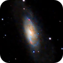 M106 and its friends - 1 hour integration,                                Alex Pinkin
