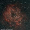 NGC2244,                                Herwig Diessner