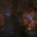 IC 1396 & SH 2 - 129,                                J.J.Losada