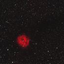 IC 5146,                                Gary Imm