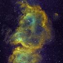The Soul Nebula (2 pane mosaic),                                Michael Lewis