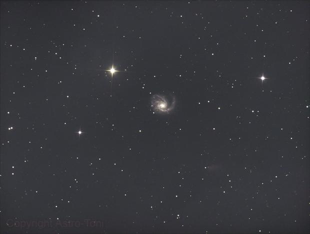 Messier 99,                                Anton