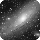 The Andromeda,                                Vencislav Krumov