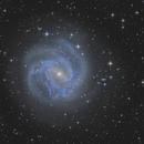 M83 / NGC 5236 - Southern Pinwheel Galaxy,                                  Martin Junius