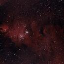NGC 2264 - Cone Nebula & Christmas Tree Cluster,                                  Alan Mason