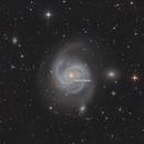 M100 with Supernova SN2019ehk,                                Martin Junius
