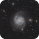 M100 with Supernova SN2019ehk,                                  Martin Junius