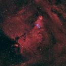 NGC 2264 Cone Nebula  & Christmas Tree Cluster,                                  herwig_p