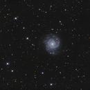 M74,                                Filip Lolic