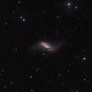 NGC660,                                GONZALO