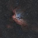 NGC 7380 The Wizard Nebula,                                Brian Maurer