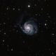 Pinwheel galaxy,                                Bernard DELATTRE