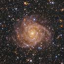 IC 342,                                Joonhwa Lee