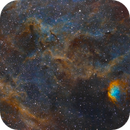 Flower in a Cosmic Field (Sh2-101 and surrounding nebula),                                  Gary Lopez