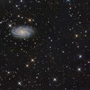 NGC2336 and IC467,                                Albert van Duin