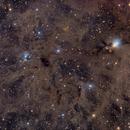 NGC 1333 Widefield - Deep Sky West Remote Observatory,                                Deep Sky West (Lloyd)